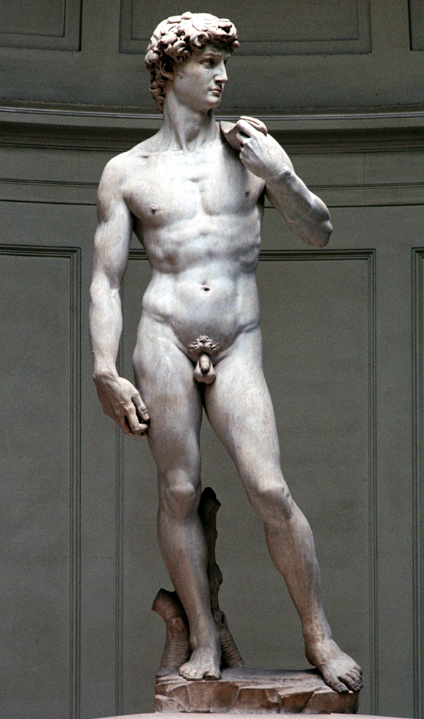 Michelangelo, David (front view) 1504.jpg