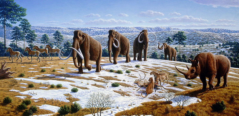 Pleistocene age beginning of ag
