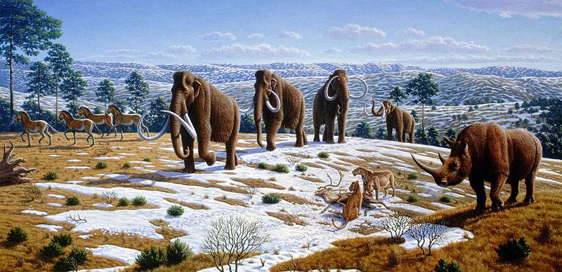 Pleistocene age beginning of ag